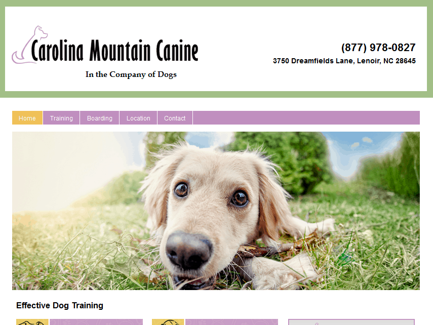 how to become a dog trainer canada