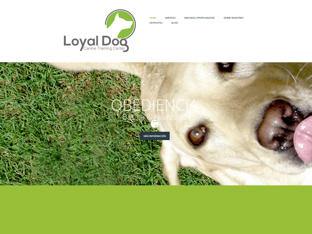 loyal dogs Shop for loyal dogs on etsy, the place to express your creativity through the buying and selling of handmade and vintage goods.
