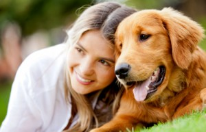 certification for dog trainers