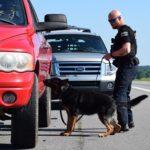 police k9 trainer course drug dog