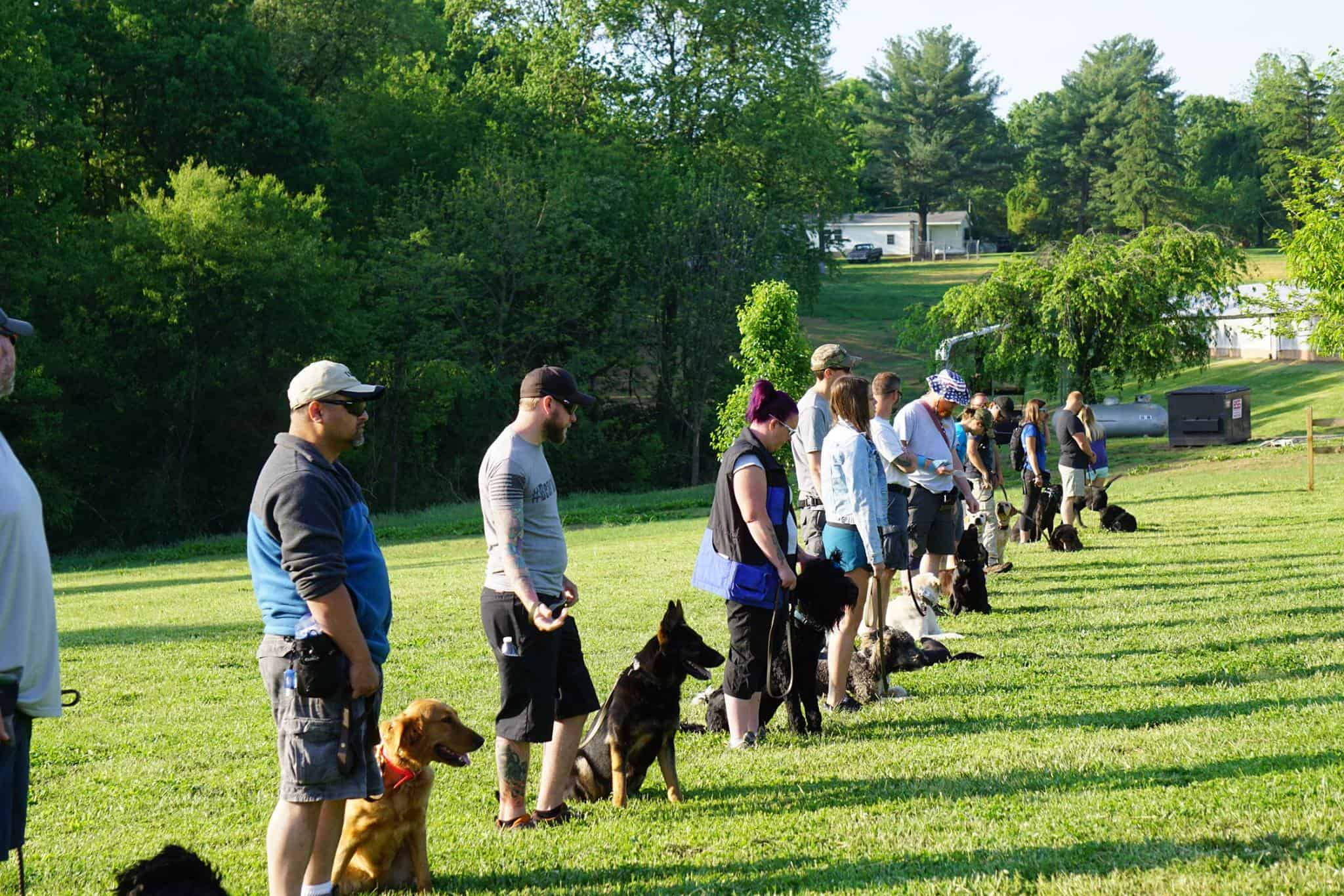 dog trainer school class