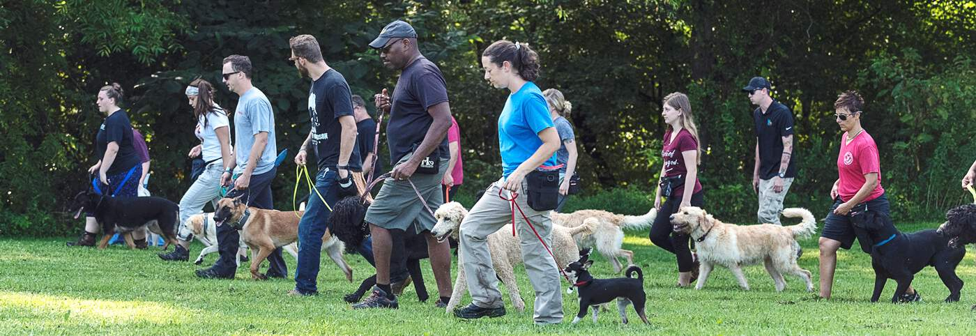 va approved dog trainer school