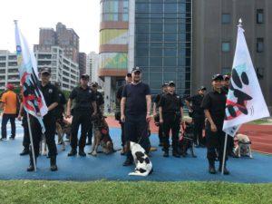 steve rigden taipei dog training