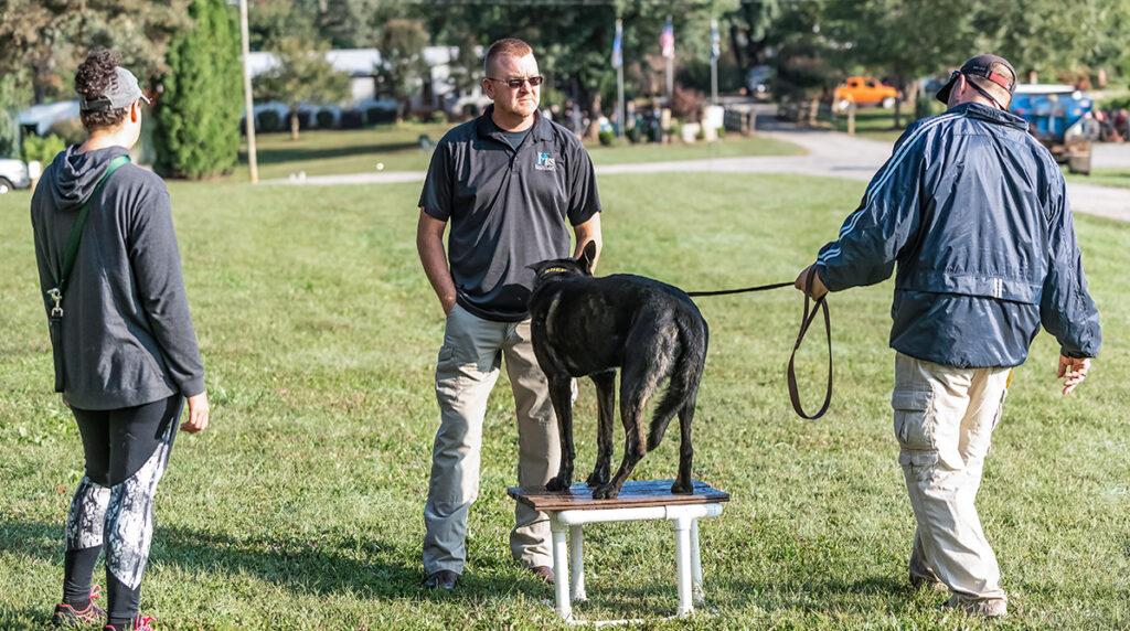 southeast dog trainer school