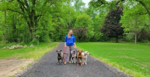 dogmore academy dog trainer in michigan